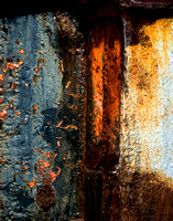 Fine Art - Abstract Photography from Florida
