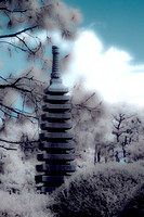Morikami Japanese Gardens - Infrared Photography
